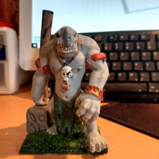 Picture of print of Troll Miniature version 2
