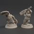 Iro & Kez - Dwarf berzerkers image