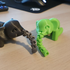 Picture of print of Flexiphant