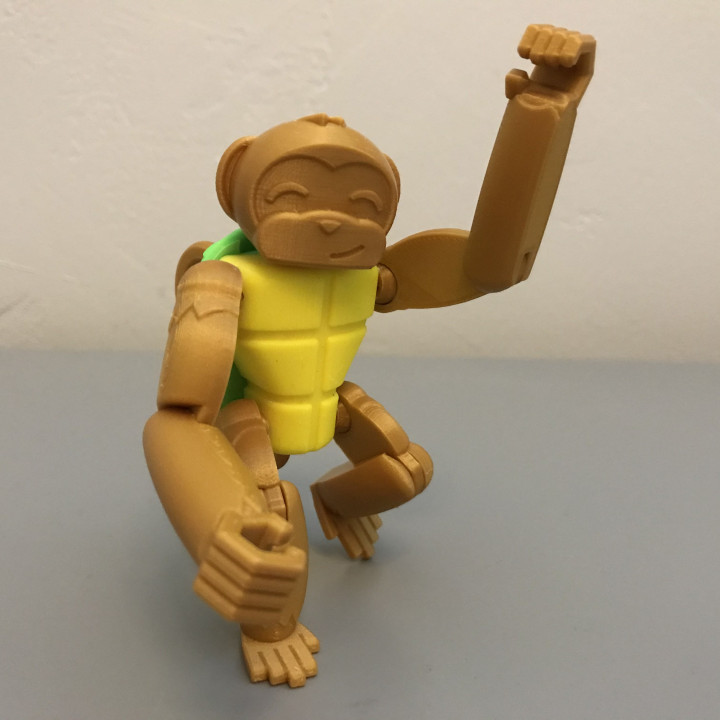 Turtle Monkey