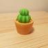 Mini Cactus pot image