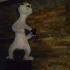 ermine ferrets image