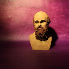 Picture of print of Bust of Socrates