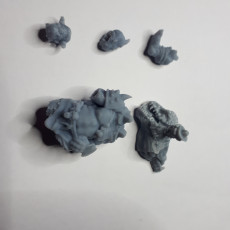 Picture of print of Ettin Giant.