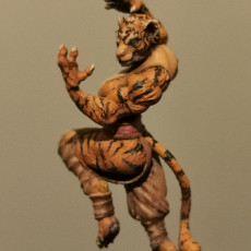 Picture of print of Tabaxi01.MonkF