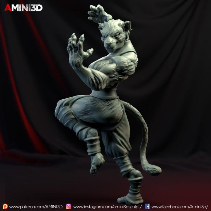 Download Tabaxi01 Monkf Von Lesley Rebusa Dungeons & dragons nolzur`s marvelous unpainted miniatures: tabaxi01 monkf