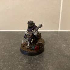 Picture of print of Tabaxi03.Bard