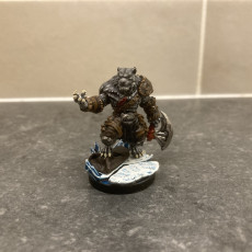 Picture of print of Tabaxi04.BarbarianM