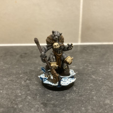 Picture of print of Tabaxi05.BarbarianF