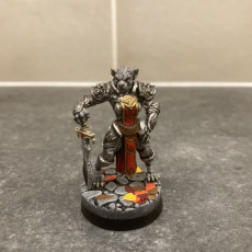 Picture of print of Tabaxi09.PaladinF