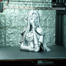 Picture of print of Princess Zelda