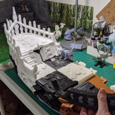 Picture of print of Undead Pirate Ship