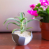 Abstract Planter image