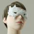 Carnival Mask - Bird image