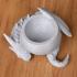 Dragon bowl image