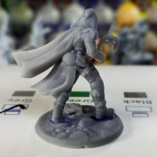 Picture of print of Wood Elf male ranger