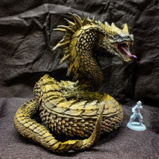 Picture of print of Wyrm