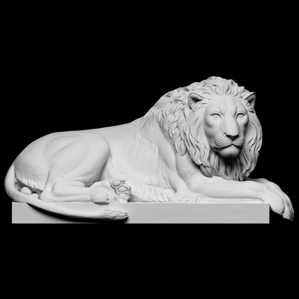 1000x1000 lion