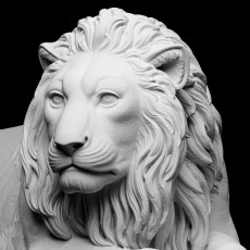 Recumbent Lion