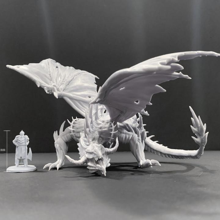 Black Dragon pose#1