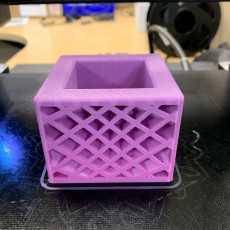 Picture of print of Star Spectrum Planter