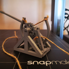 Picture of print of 3D-printable Davinci catapult gift card