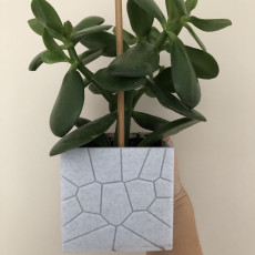 Picture of print of brick plant pot