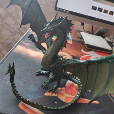 Picture of print of Green Dragon Pose#1
