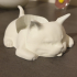 chat mignon porte-bougie image