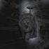 Wraith Trophy image