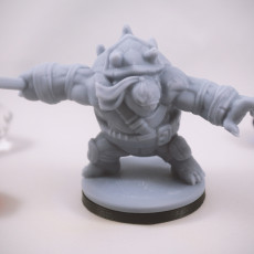 Picture of print of Teenage Mutant Ninja Tortle - Dannyfellow Miniature