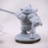 Teenage Mutant Ninja Tortle - Dannyfellow Miniature image