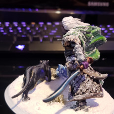 Picture of print of Drizzle (not Drizzt) - Dual wielding Drow Elf Fighter/Ranger