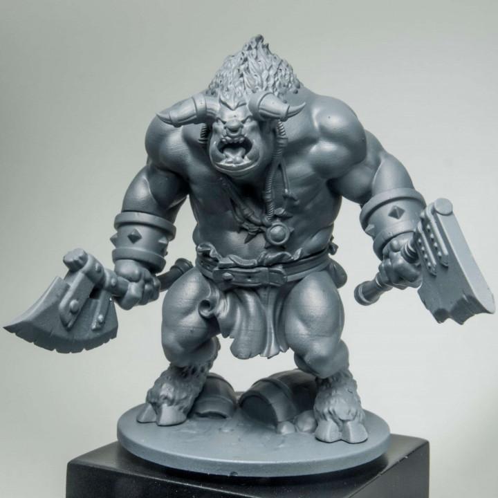 Warrior Minotaur Hero