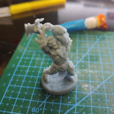 Picture of print of Dragon Born Pose #1