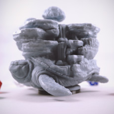 Picture of print of World Turtle Miniature/Model