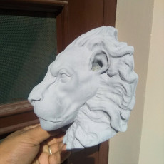 Picture of print of lion head