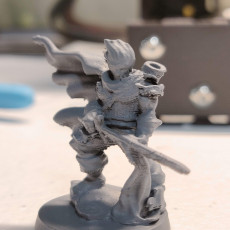 Picture of print of Drow Fighter