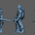 Drow Fighter image