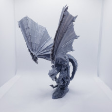 Picture of print of Crystal Dragon pose #2