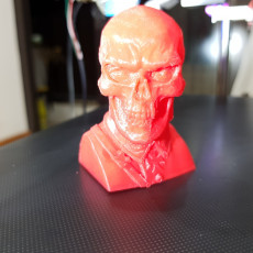 Picture of print of Red Skull