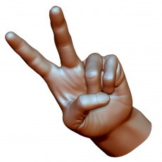 Victory sign hand male