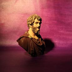 Picture of print of Portrait of Septimius Severus
