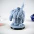 Dwarf Guardian Variant Miniature image