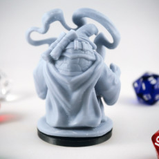 Picture of print of Tortle Sorcerer Miniature