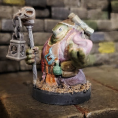 Picture of print of Tortle Sorcerer Variant Miniature - Pre-Supported