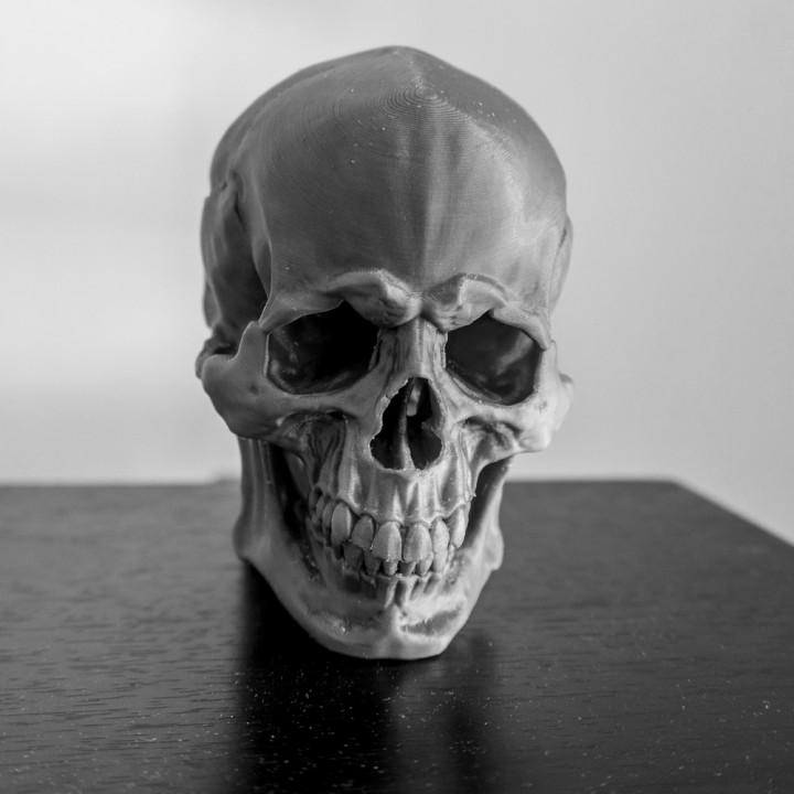Skull Version 1.1