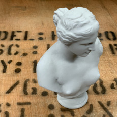 Picture of print of Bust of Venus de Milo