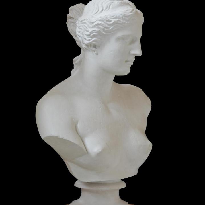 Bust of Venus de Milo