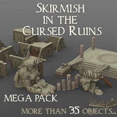 Skirmish In The Cursed Ruins